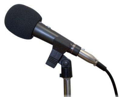 picture of pop shield for microphone